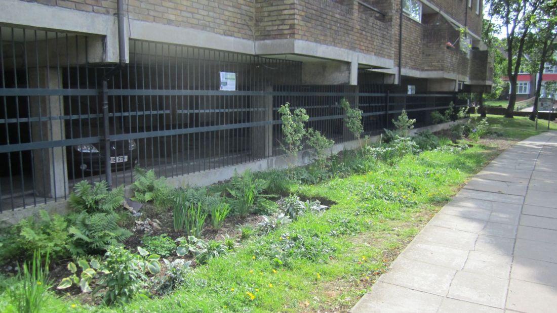 Cressingham rain gardens - finished