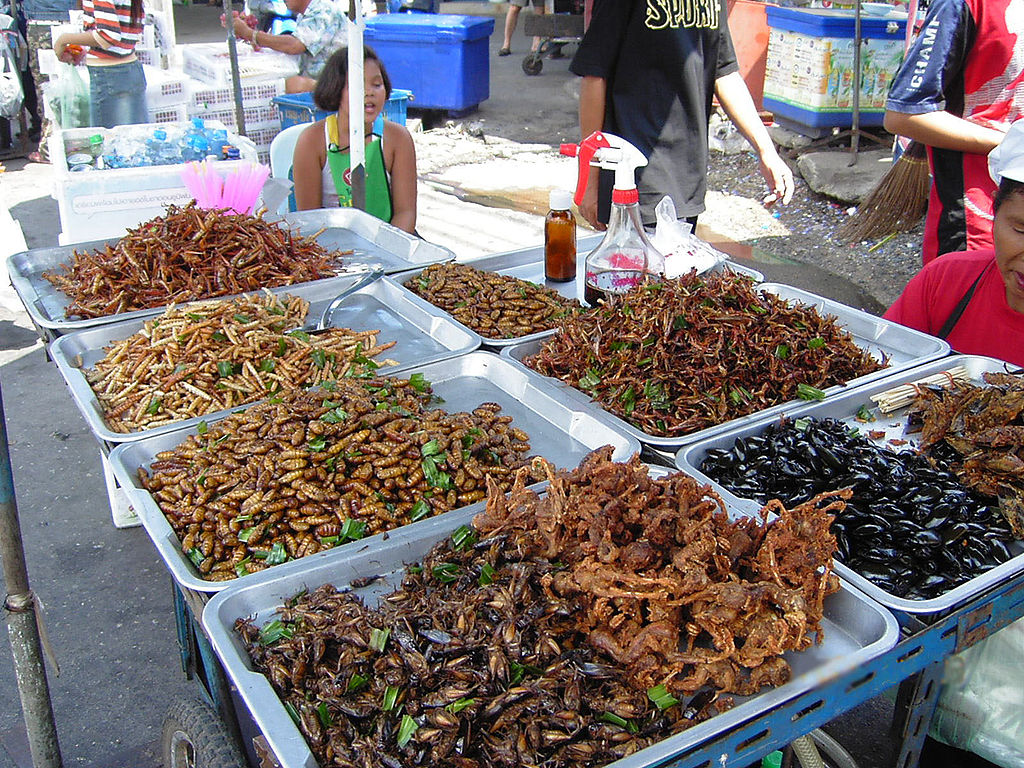 1024px-Insect_food_stall